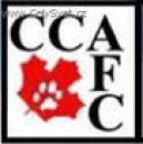 :  > CCA (Canadian Cat Association)